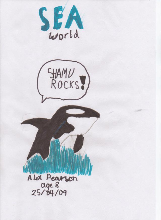 Shamu by Alex Pearson Age 8